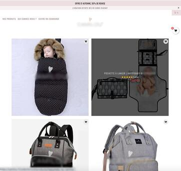 exemple dropshipping